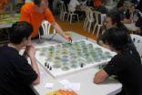 festivalToulouse2010_013